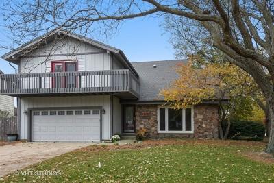 Crystal Lake Single Family Home For Sale: 890 Sarasota Lane