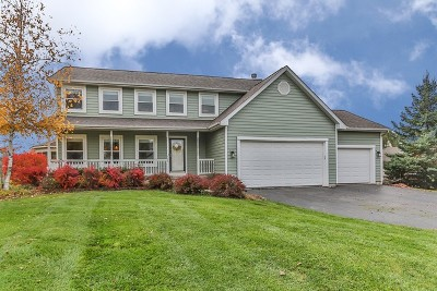 McHenry Single Family Home For Sale: 665 Grand Meadow Lane