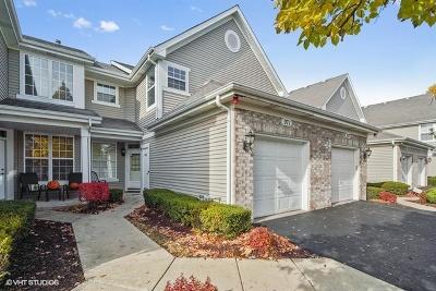 Naperville Condo/Townhouse Price Change: 971 Sheridan Circle