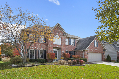 Naperville Single Family Home For Sale: 2408 New Haven Drive