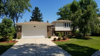 Arlington Heights Single Family Home For Sale: 1004 West Brittany Drive