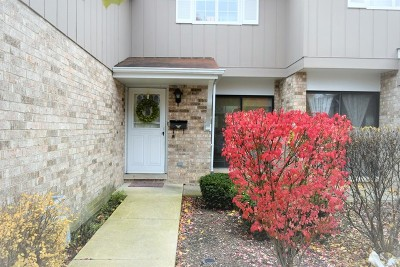 Wheaton Condo/Townhouse For Sale: 1574 Dundee Drive