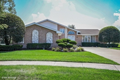 Tinley Park Single Family Home Price Change: 8919 Linden Drive