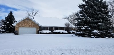 McHenry Single Family Home For Sale: 1610 West Reiche Lane