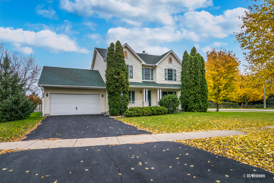 Shorewood Single Family Home For Sale: 1200 Country Drive