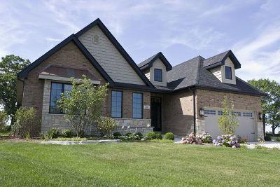 Homer Glen Single Family Home For Sale: 15219 South Mackenzie Drive