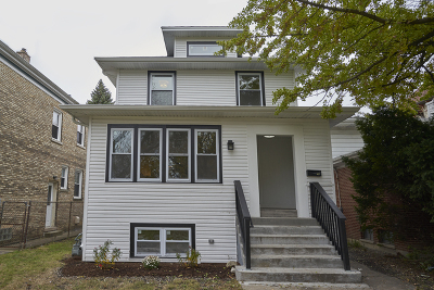 Oak Park Single Family Home For Sale: 743 South Lombard Avenue