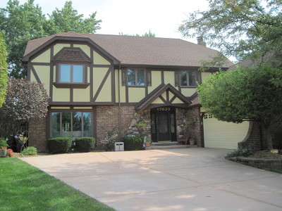 Tinley Park Single Family Home For Sale: 17633 Oakwood Drive