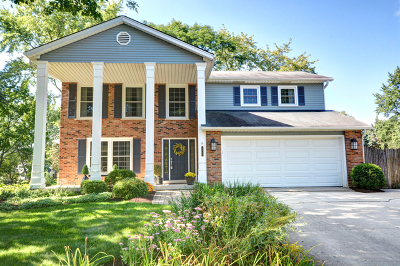 Naperville Single Family Home For Sale: 1131 Overton Court