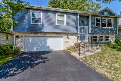 Carol Stream Single Family Home For Sale: 810 Niagara Street
