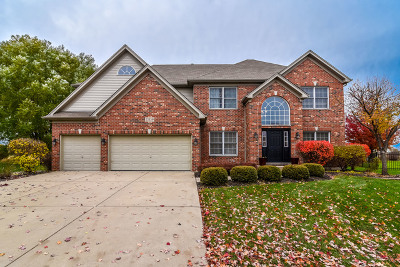 Plainfield Single Family Home For Sale: 25159 Thornberry Drive