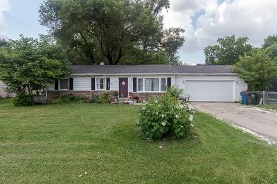 Carpentersville Single Family Home For Sale: 174 Old Farm Lane