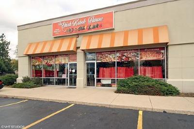Orland Park Commercial For Sale: 9328 West 159th Street