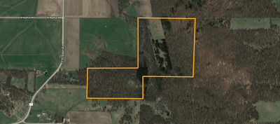 Ogle County Residential Lots & Land For Sale: 1394 East Lighthouse Road