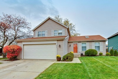 Buffalo Grove Single Family Home For Sale: 613 Harris Drive