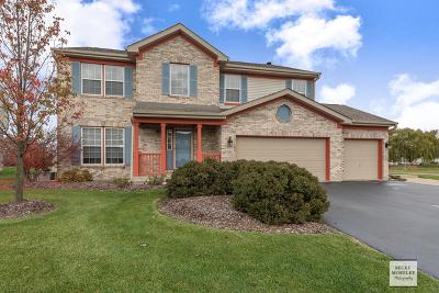 Plainfield Single Family Home For Sale: 6215 Brunswick Drive