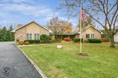 Homer Glen Single Family Home For Sale: 15110 Wood Duck Lane