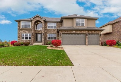 Olympia Fields Single Family Home For Sale: 3026 Hermes Drive