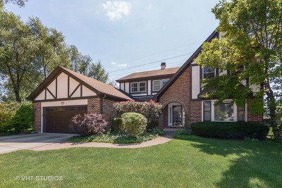 Arlington Heights Single Family Home For Sale: 1215 East Milida Court