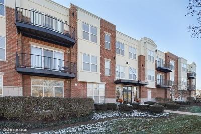 Naperville Condo/Townhouse New: 104 East 11th Avenue #203