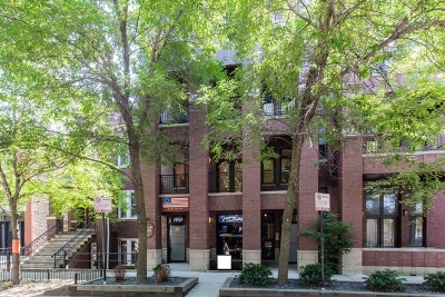 Condo/Townhouse For Sale: 1951 West Cortland Street #1