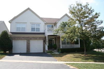 Geneva Single Family Home For Sale: 578 Shepherd Lane