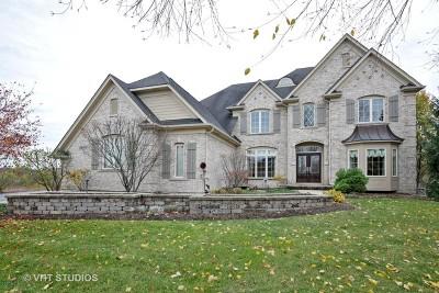 Kane County Single Family Home For Sale: 39w573 Walt Whitman Road