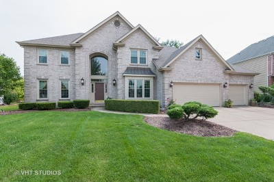 Naperville Single Family Home For Sale: 3344 White Eagle Drive