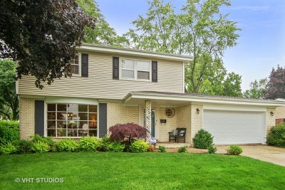 Arlington Heights Single Family Home For Sale: 816 West Grove Street