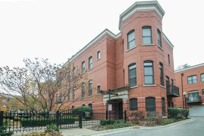 Chicago Condo/Townhouse New: 910 West Village Court