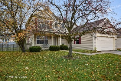 Streamwood Single Family Home For Sale: 61 McKinley Lane