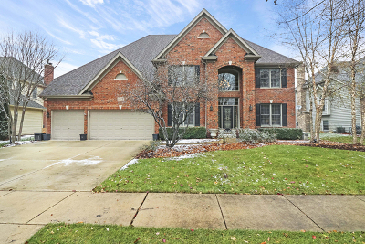 Naperville Single Family Home For Sale: 3819 Junebreeze Lane