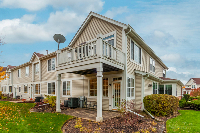 Warrenville Condo/Townhouse For Sale: 32702 Fowler Circle