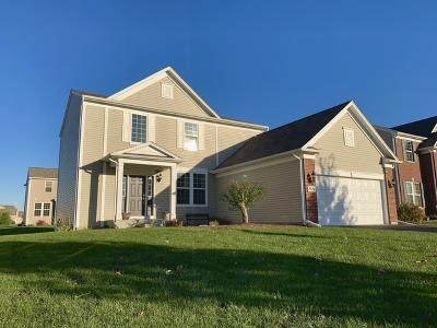 Carpentersville Single Family Home For Sale: 3584 Edgewood Lane