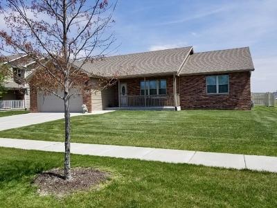 Coal City Single Family Home New: 225 South Robin Court