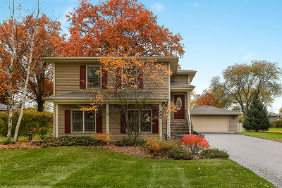 Glen Ellyn Single Family Home For Sale: 380 South Ott Avenue