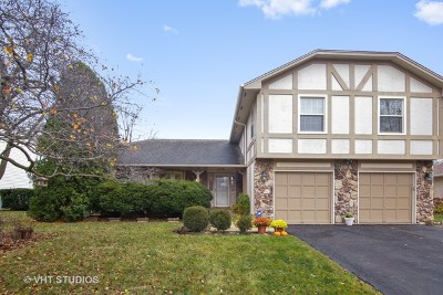 Hoffman Estates Single Family Home For Sale: 3785 Arrowwood Lane