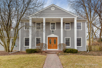 Naperville Single Family Home For Sale: 813 South Charles Avenue