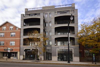 Chicago Condo/Townhouse New: 1650 West Belmont Avenue #4E