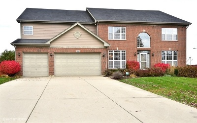 Hoffman Estates Single Family Home For Sale: 1685 Heron Way