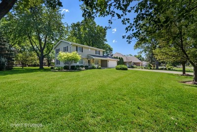 Naperville Single Family Home For Sale: 5s351 Columbia Street