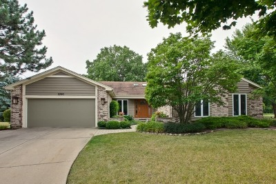 Libertyville Single Family Home For Sale: 1200 Brian Circle