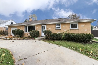 Roselle Single Family Home For Sale: 509 Spring Street