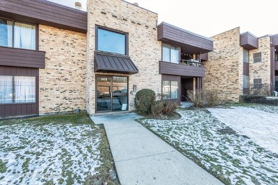 Palatine Condo/Townhouse New: 1413 North Sterling Avenue #204