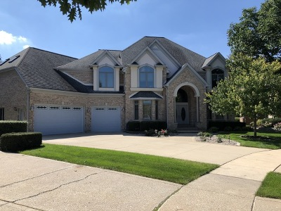 Glen Ellyn Single Family Home For Sale: 178 Braeburn Court