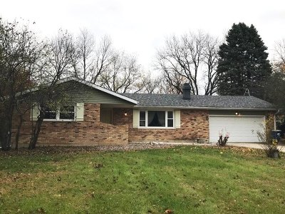 Elgin Single Family Home For Sale: 12n265 Hilltop Road
