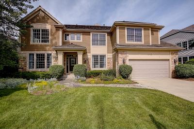 Libertyville Single Family Home For Sale: 1113 Jessica Lane