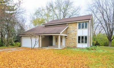 Warrenville Single Family Home For Sale: 30w290 Ridgewood Court