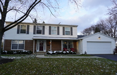 Palatine Single Family Home For Sale: 846 West Partridge Drive