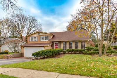 Schaumburg Single Family Home New: 330 South Cedarcrest Drive